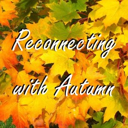 Blog 33 - Reconnecting with Autumn