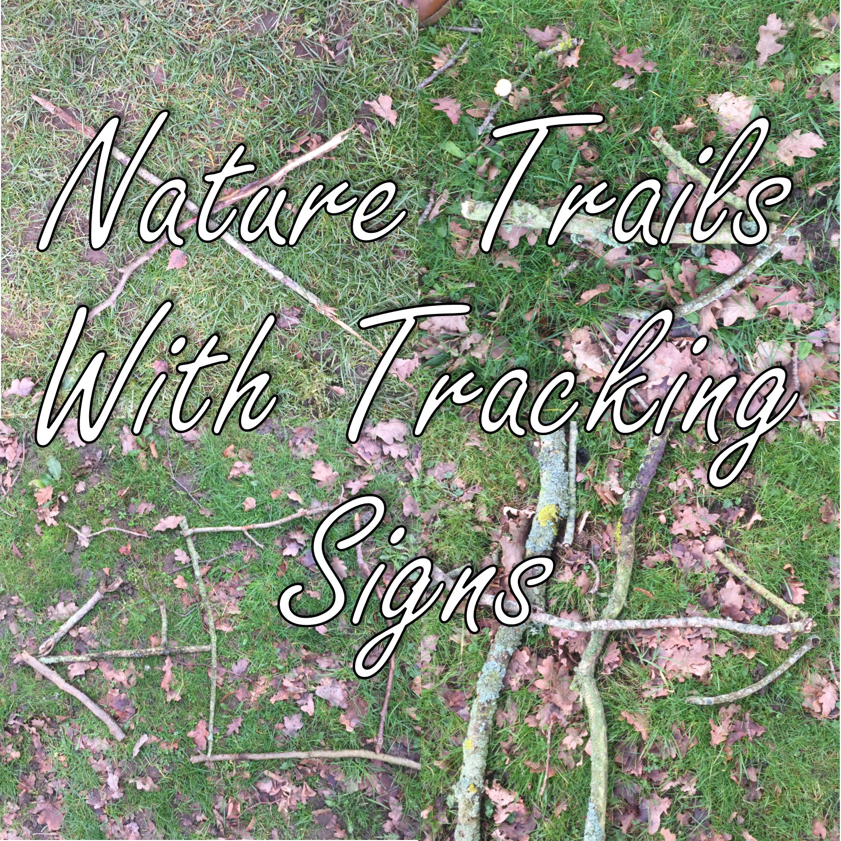Nature Trails With Tracking Signs